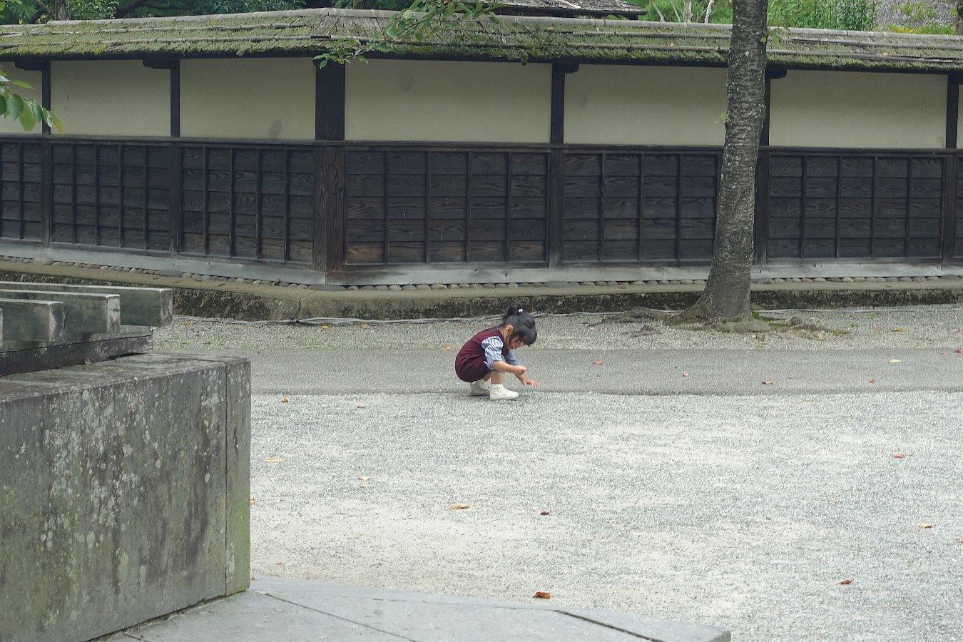 鶴ヶ城公園 茶室「麟閣」_c0112559_08485710.jpg