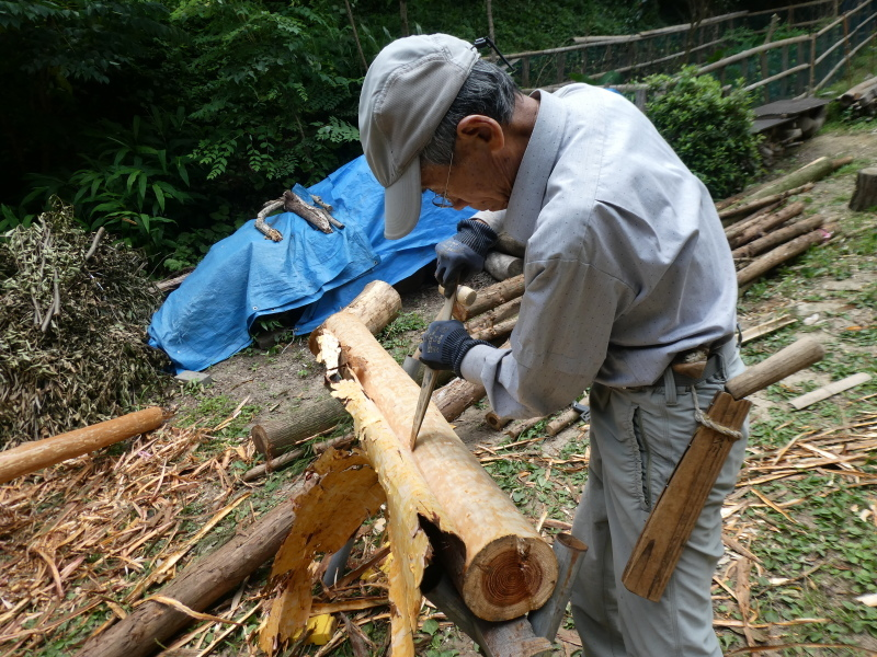 杉丸太の皮剥き・・・孝子の森_c0108460_20080043.jpg