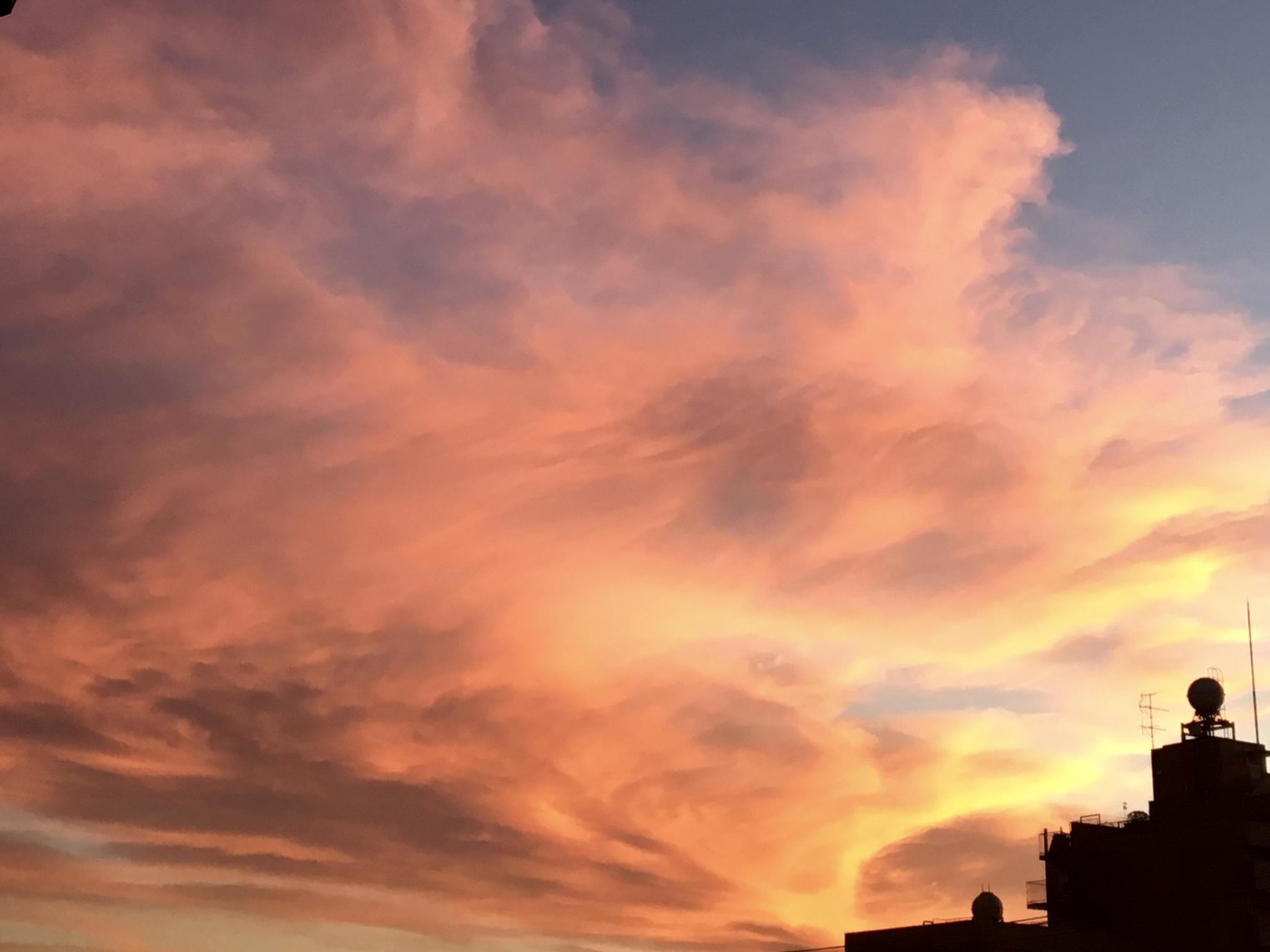今朝の朝焼けは、特に色合いが綺麗でした!_c0128489_06031133.jpeg