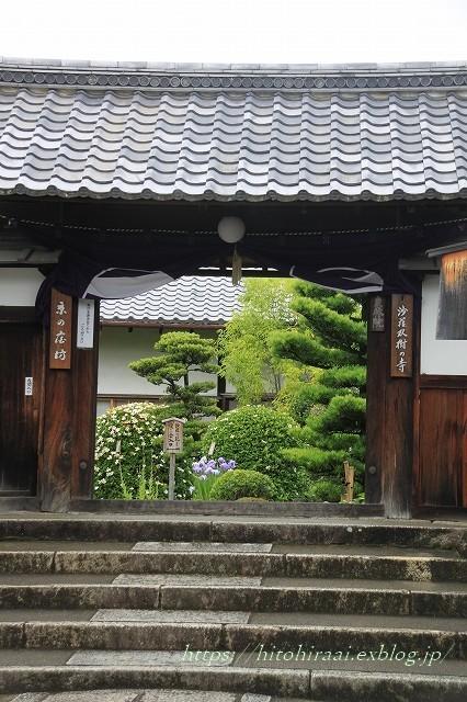 京都 妙心寺 東林院 沙羅の花を愛でる会_f0374092_21532179.jpg