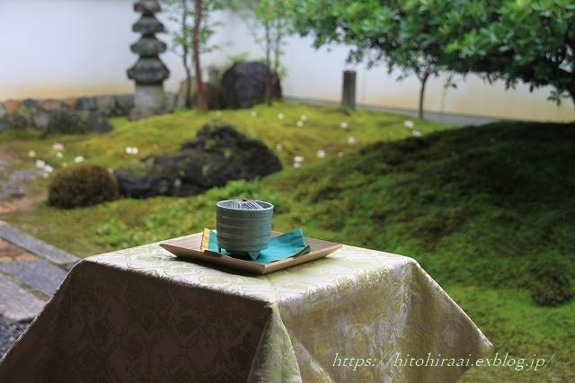 京都 妙心寺 東林院 沙羅の花を愛でる会_f0374092_21555444.jpg