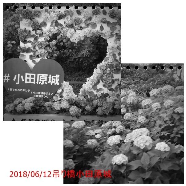 f0120433_00573659.jpg