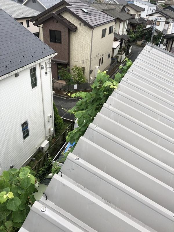 『東船橋の家Ⅱ』10年点検_c0019551_21244398.jpg