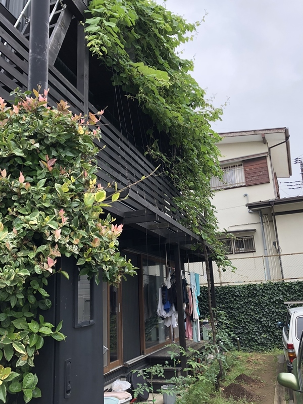 『東船橋の家Ⅱ』10年点検_c0019551_21260537.jpg
