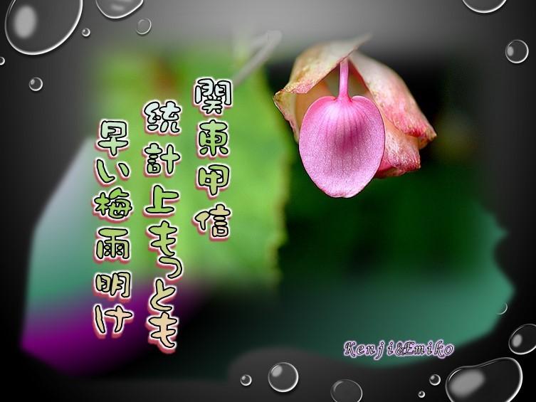 f0214467_09425619.jpg