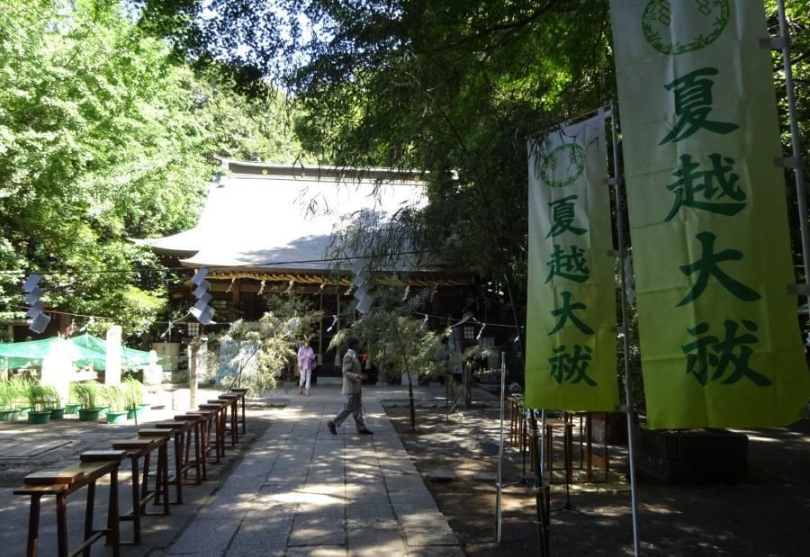 小平神明宮で夏越大祓い_f0059673_19453195.jpg