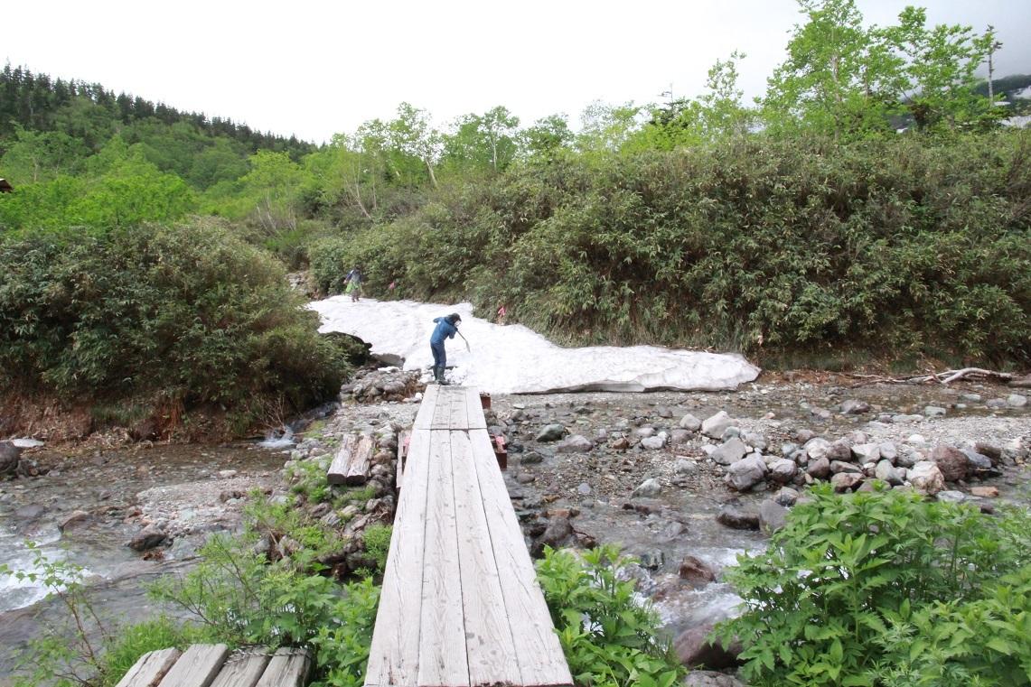 孫と来た小川のところまで ~白馬・栂池自然園~_a0107574_17243362.jpg