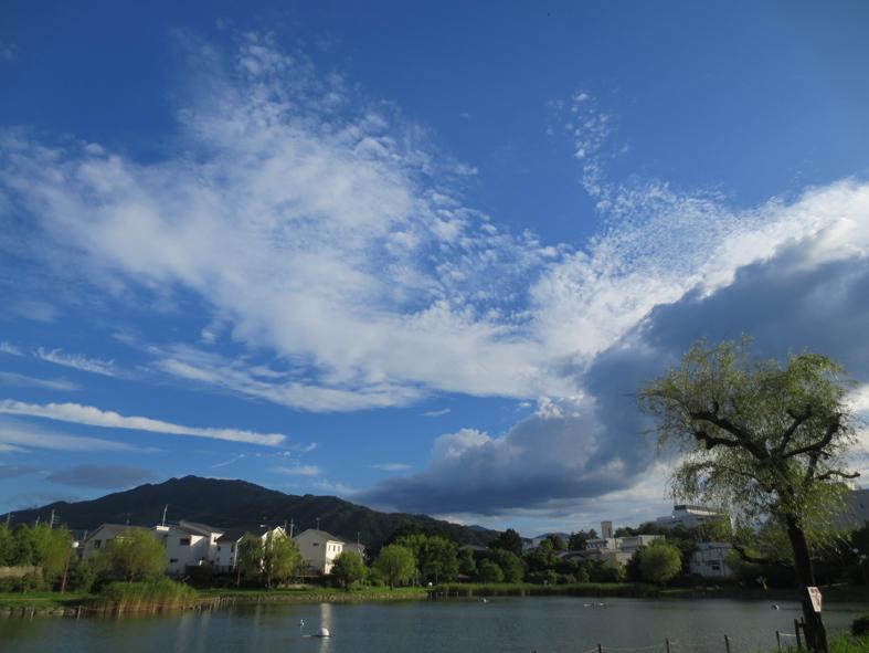 ■雲の変幻──週替わりの夕暮れ[6/28-7/1]_d0190217_22385082.jpg