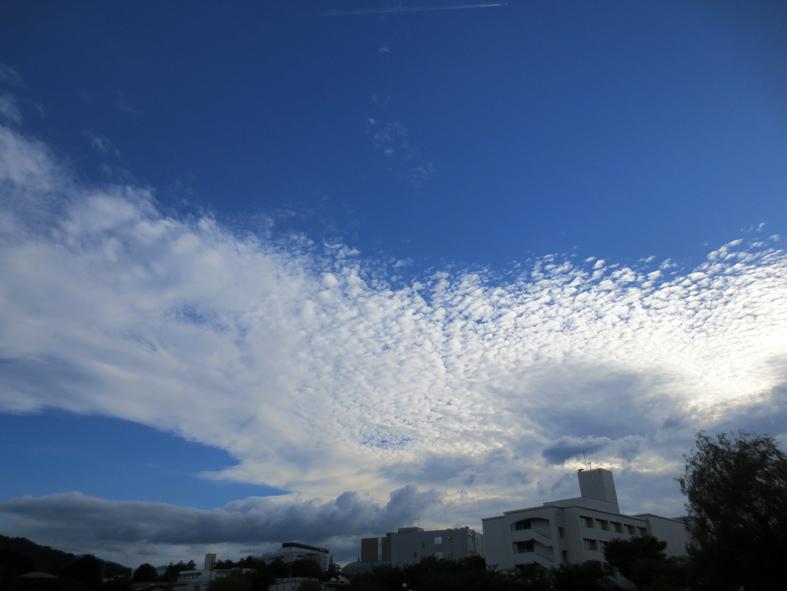 ■雲の変幻──週替わりの夕暮れ[6/28-7/1]_d0190217_22393251.jpg