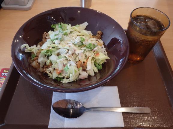 すき家のシーザーレタス牛丼      豊中曽根店_c0118393_10423454.jpg