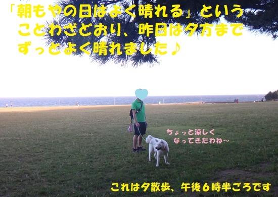f0121712_15301402.jpg
