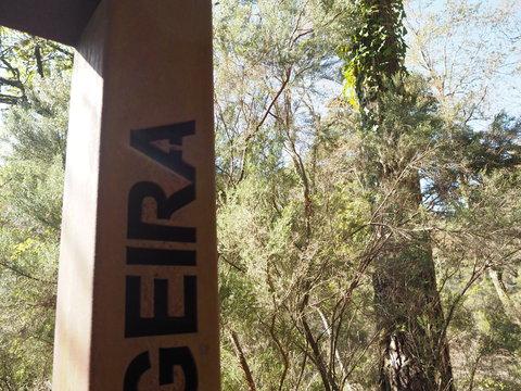 ポルト散歩(25)Peneda-Gerês 国立公園 ローマ時代のマイルストーン_c0212604_22254960.jpg