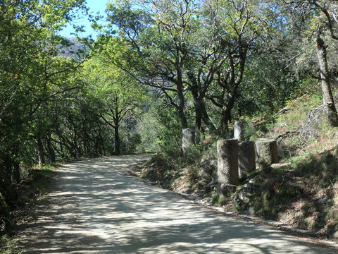 ポルト散歩(25)Peneda-Gerês 国立公園 ローマ時代のマイルストーン_c0212604_22343195.jpg