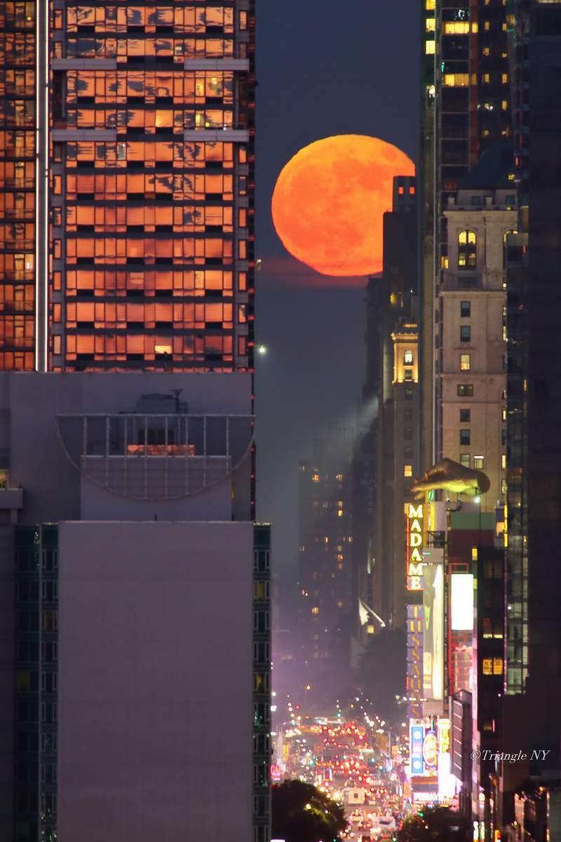 Strawberry Moon Henge 2018_a0274805_19574558.jpg