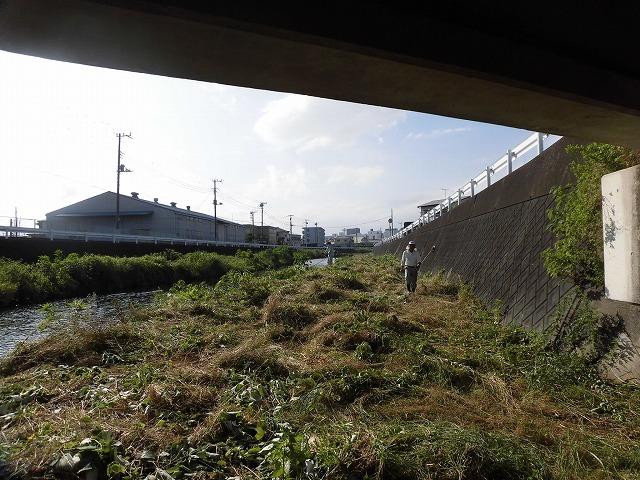 最後はバテバテ! 梅雨明けを思わせる暑さの中で「小潤井川 友の会」の草刈り清掃_f0141310_06425566.jpg