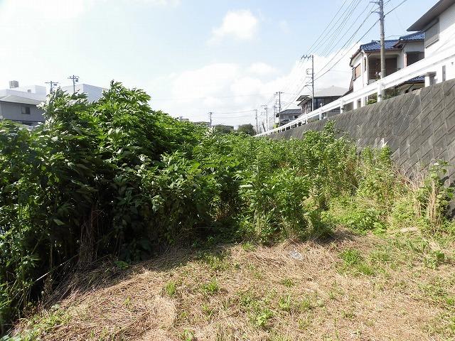 最後はバテバテ! 梅雨明けを思わせる暑さの中で「小潤井川 友の会」の草刈り清掃_f0141310_06433632.jpg