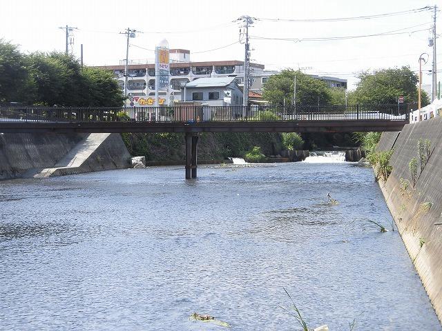 小潤井川の改修工事の一環で、旧国1の津田橋架け替え工事が始まった_f0141310_07522401.jpg