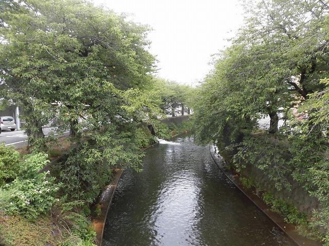 小潤井川の改修工事の一環で、旧国1の津田橋架け替え工事が始まった_f0141310_07530340.jpg