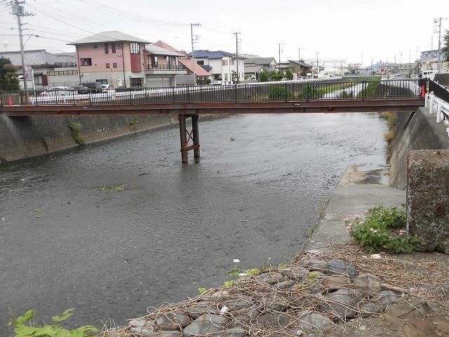 小潤井川の改修工事の一環で、旧国1の津田橋架け替え工事が始まった_f0141310_07534037.jpg