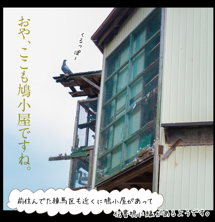 a0358016_19133655.jpg