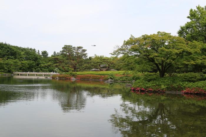 昭和記念公園散策♪日本庭園のハナショウブ 3_d0152261_13282234.jpg