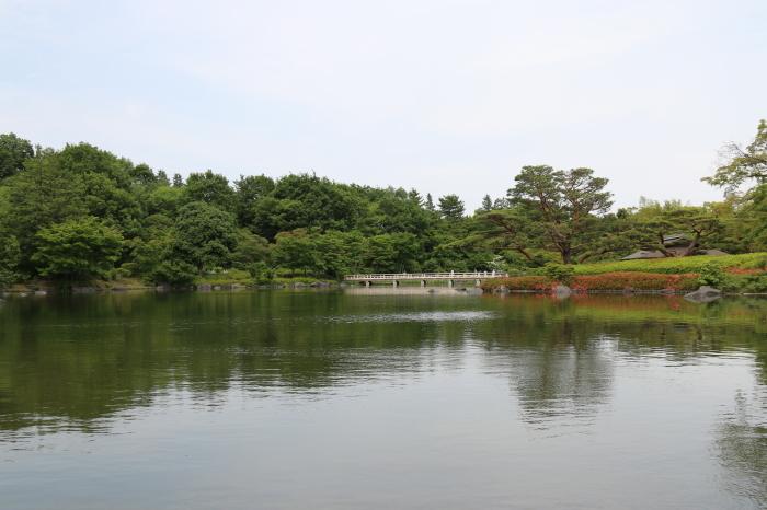 昭和記念公園散策♪日本庭園のハナショウブ 3_d0152261_13285679.jpg