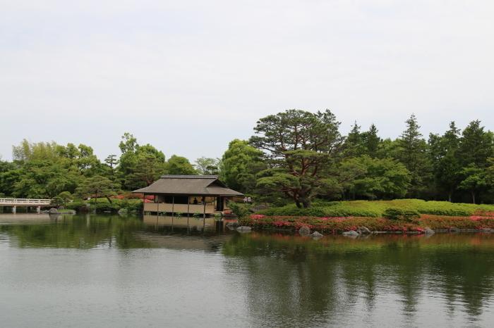 昭和記念公園散策♪日本庭園のハナショウブ 3_d0152261_13310516.jpg