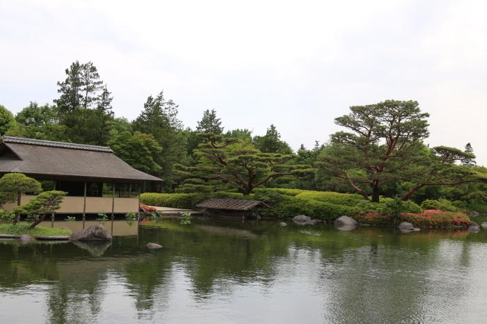 昭和記念公園散策♪日本庭園のハナショウブ 3_d0152261_13362515.jpg