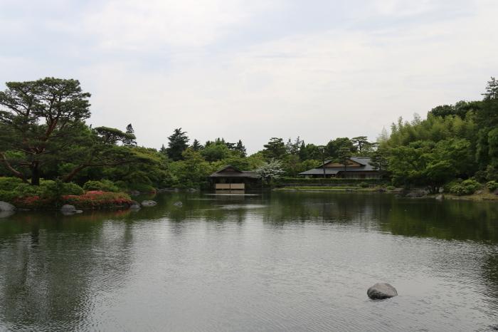 昭和記念公園散策♪日本庭園のハナショウブ 3_d0152261_13364621.jpg