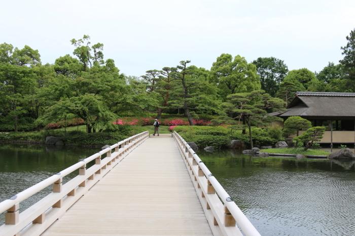 昭和記念公園散策♪日本庭園のハナショウブ 3_d0152261_13374566.jpg