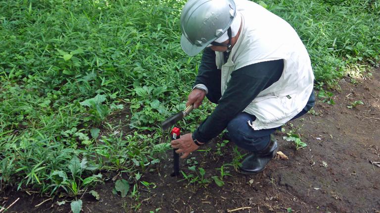 まちむら交流きこうの里山林整備交付金の採択内定6・14_c0014967_20001026.jpg