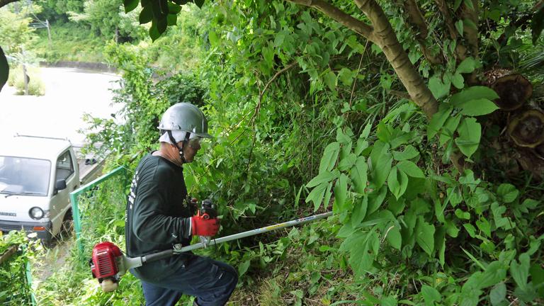 まちむら交流きこうの里山林整備交付金の採択内定6・14_c0014967_20022397.jpg