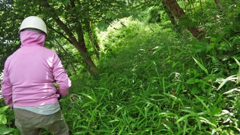 まちむら交流きこうの里山林整備交付金の採択内定6・14_c0014967_20023857.jpg