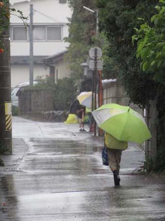 雨の蓮見物_f0014205_11142613.jpg