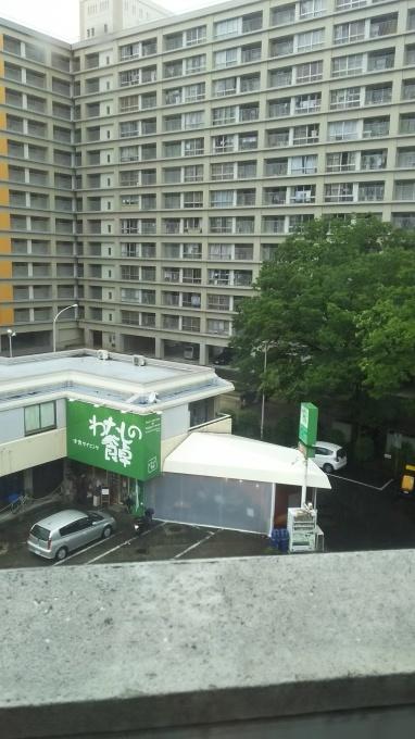 広島など各地で特別警報級豪雨≪随時更新≫_e0094315_13121242.jpg