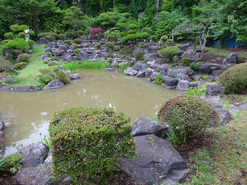 お庭の手入れ_c0111229_18343704.jpg