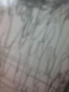 in the same class_b0136144_1036666.jpg