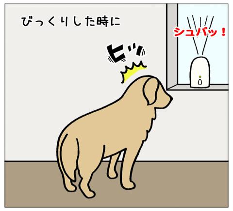 エフ漫画『顔が四角くなる感じ(コメの場合)』_c0033759_19591780.jpg