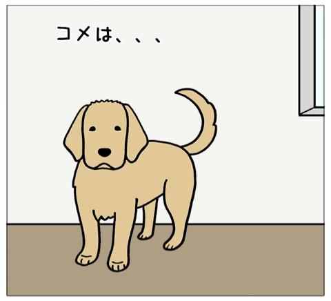 エフ漫画『顔が四角くなる感じ(コメの場合)』_c0033759_19591944.jpg