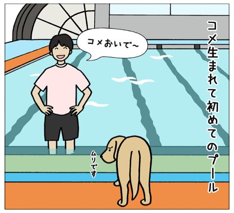 エフ漫画『エフの教え3』_c0033759_20022364.jpg