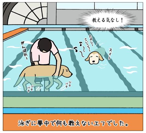 エフ漫画『エフの教え3』_c0033759_20030838.jpg