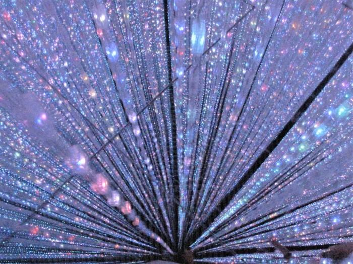 東京散歩 迎賓館 & お台場 デジタルアート・ミュージアム(チームラボ)_d0150720_06224082.jpg