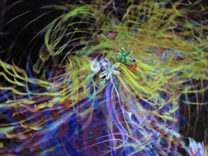 東京散歩 迎賓館 & お台場 デジタルアート・ミュージアム(チームラボ)_d0150720_06251261.jpg