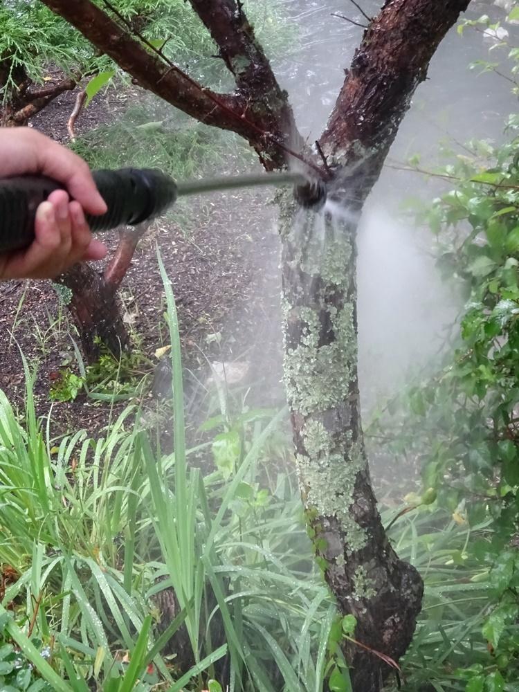 雨降り仏滅_c0111229_19470245.jpg