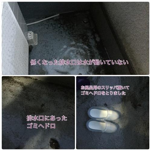 雨 & ホームパーティー & 介護_a0084343_22590286.jpeg