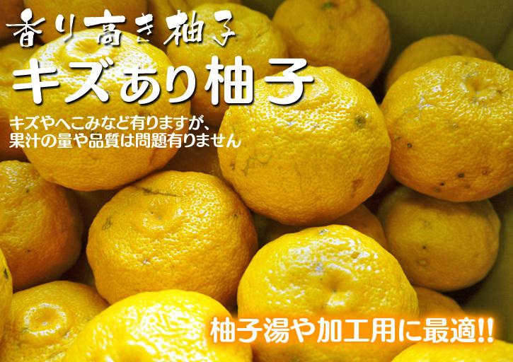 香り高き柚子(ゆず) 着果の様子を現地取材(2020) 今年もまずは青柚子を9月中旬からの出荷予定です!_a0254656_12041006.jpg