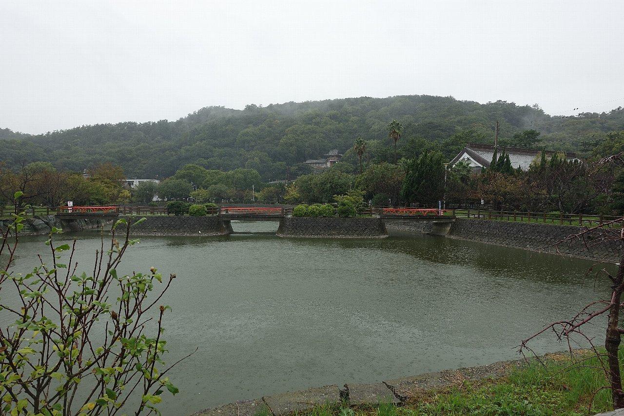 和歌山市の御手洗池公園_c0112559_08151909.jpg