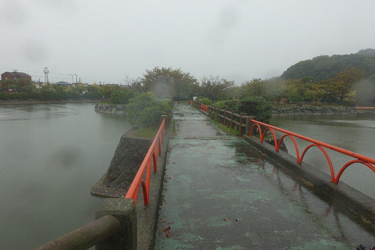 和歌山市の御手洗池公園_c0112559_08172100.jpg