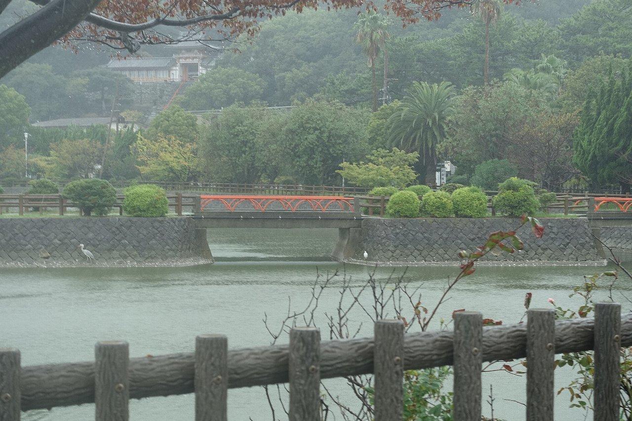 和歌山市の御手洗池公園_c0112559_08185200.jpg