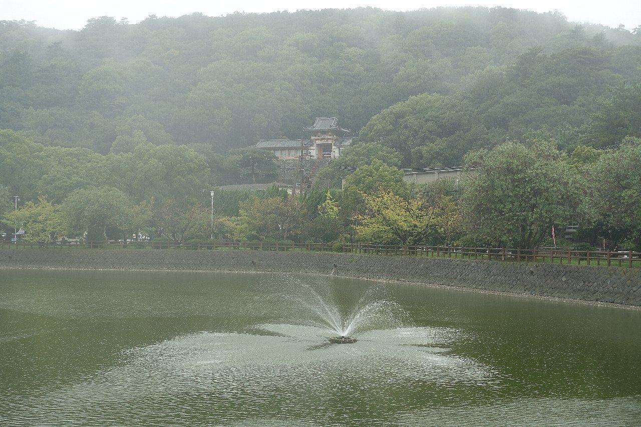 和歌山市の御手洗池公園_c0112559_08191262.jpg
